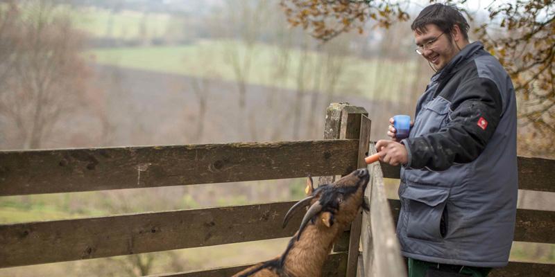 Ein Mann füttert eine Ziege mit einer Karotte.